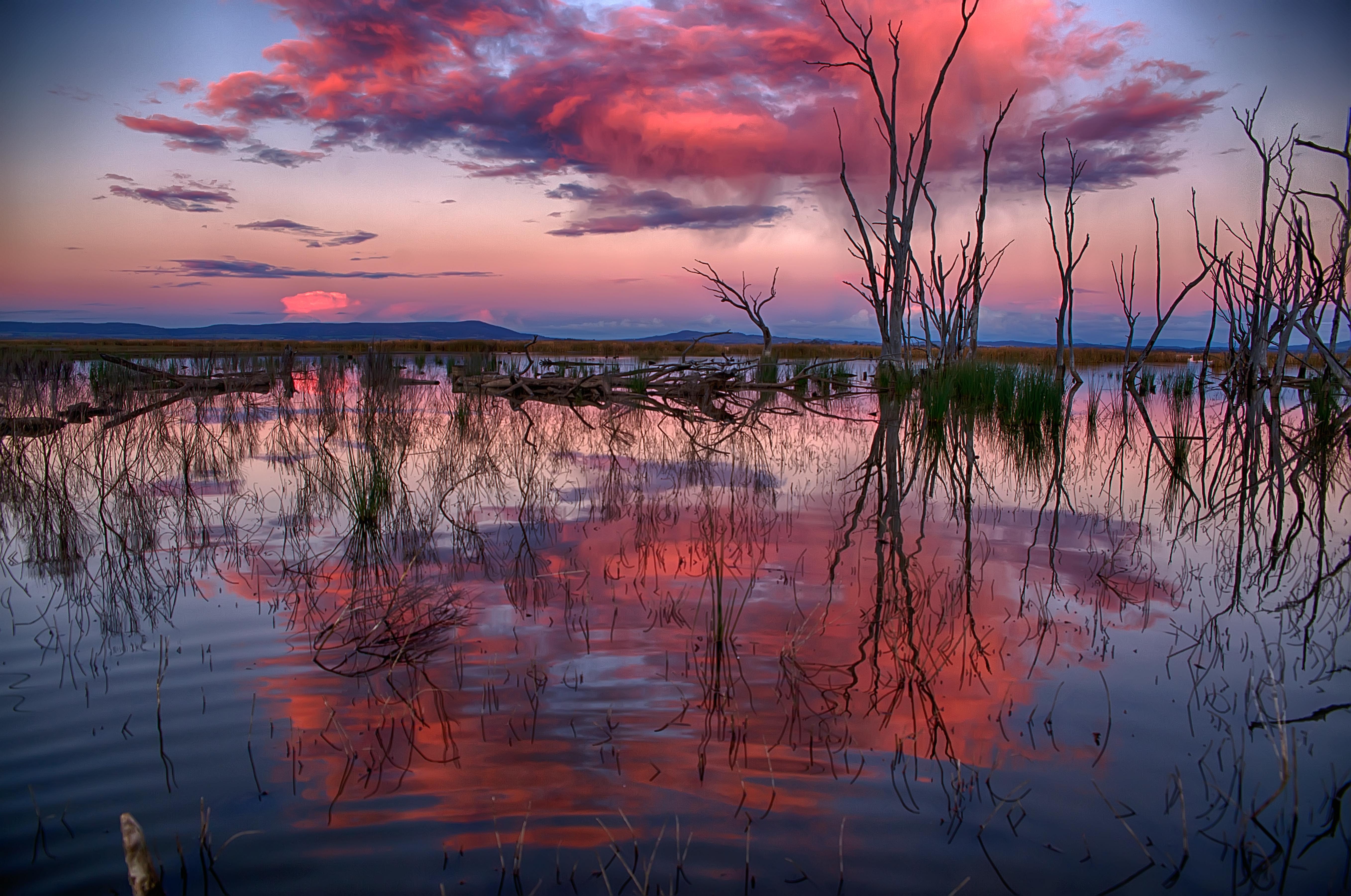 aaff9485f57 Winton Wetlands, photo taken by Rene Martens