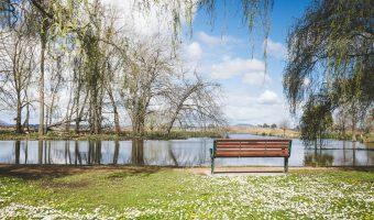 Spring in Ballarat